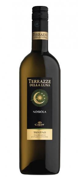 Palmers Wine Store | Nosiola, Terrazze Della Luna, Cavit